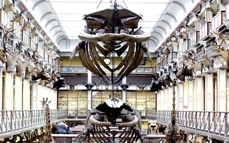 museu-dublin-01