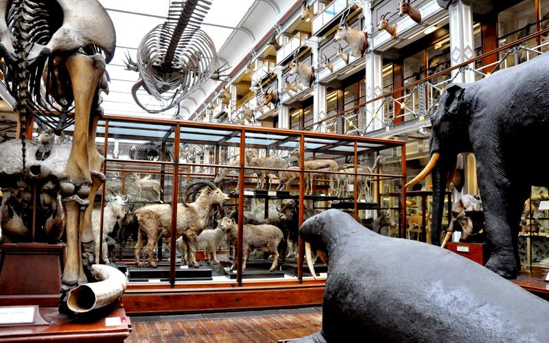 museu-dublin-05